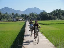 Girls on bikes riding over rice fields in southeast Myanmar near the Thai border